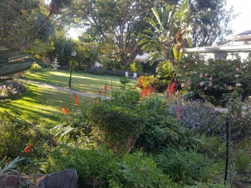 <p>La Pension Guest House Garden</p>